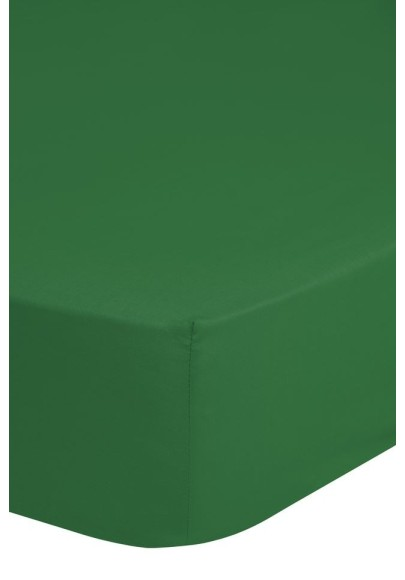 Fitted Sheet Good Morning cotton easy care Green