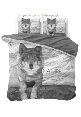 Wolf Nature Grey